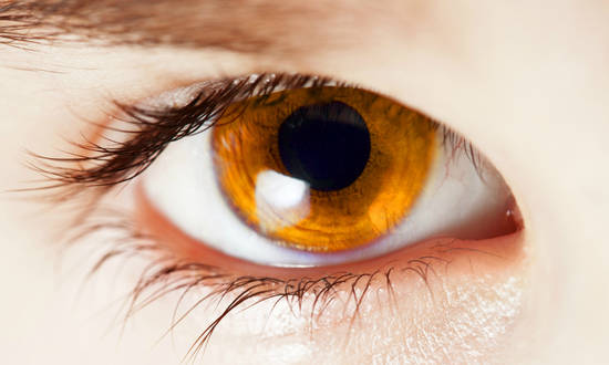 20 Facts About Color Blindness