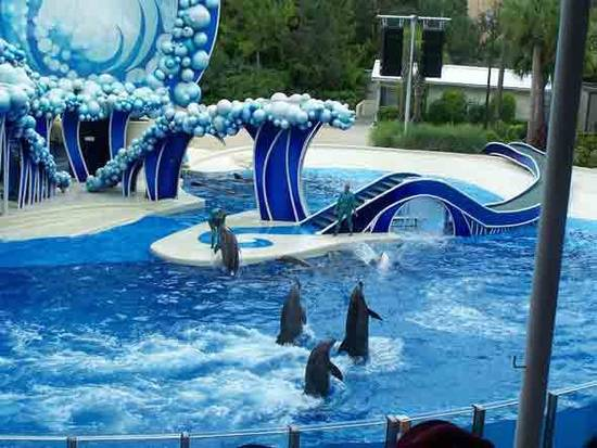 16 Facts About Seaworld