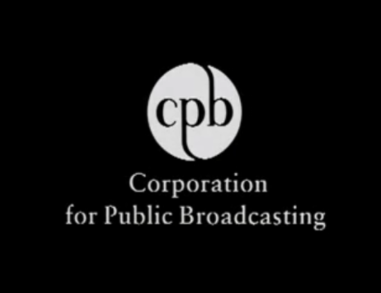 an analysis of the public broadcasting in the united states A&q is a special series that inverts the classic q&a, taking some of the most frequently posed solutions to pressing matters of policy and exploring their complexity in the summer of 2012.