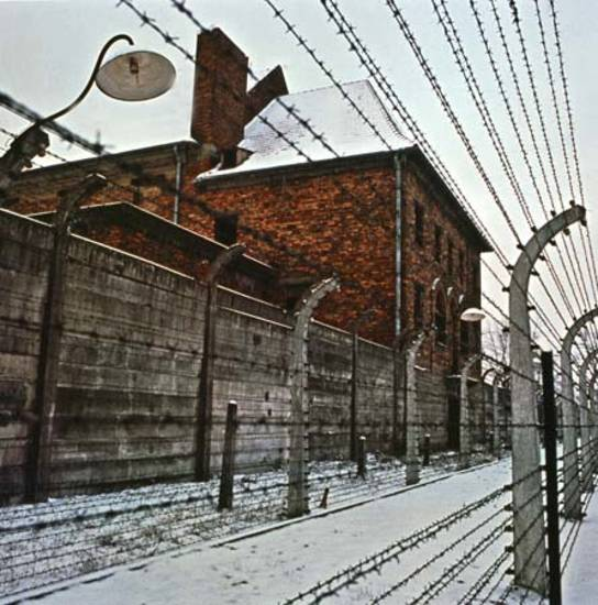 Where Was The Auschwitz Camp Located: 15 Facts About Auschwitz Concentration Camp