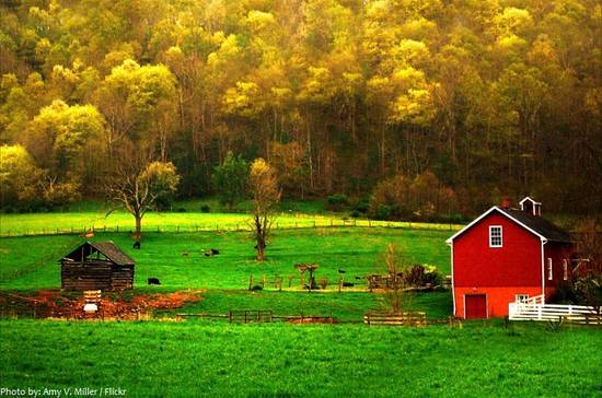 7 Facts About The Appalachian Mountains